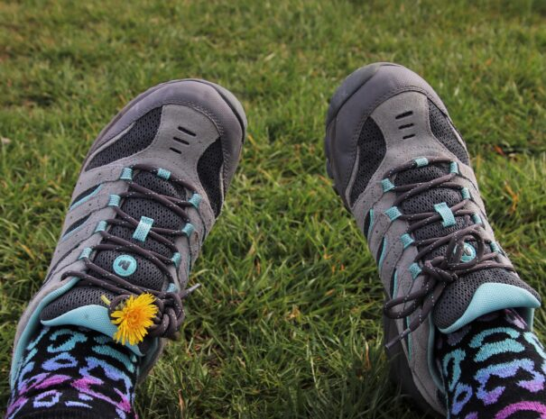 sports-shoes-4101291_1920